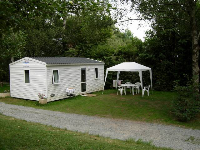Camping Mobil Home Nature Chien